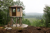 Algonquin Park Fire Tower